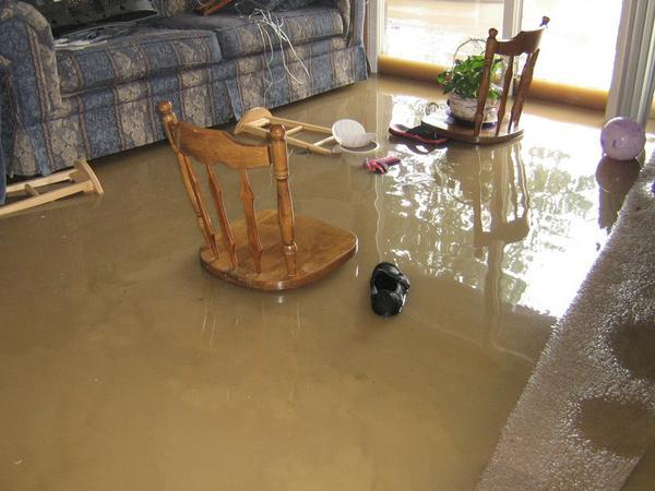 gainesville flood damages services