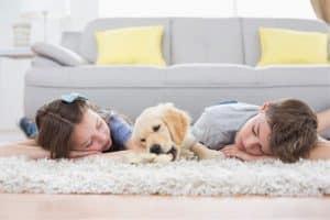 Carpet Cleaning Gainesville FL